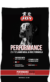 Joy Performance Lamb and Rice